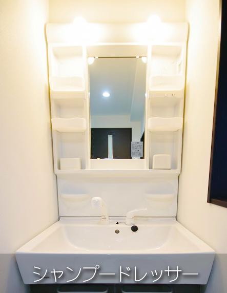 shampoo-dresser